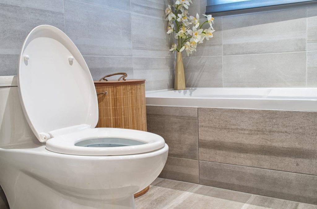 toilet repair is costly!